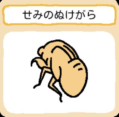 treasure-seminonukegara