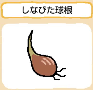 treasure-shinabitakyuukon
